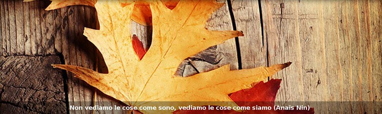 Psicologa Psicoterapeuta Roma Nord Castelli Romani Flaminia Iori